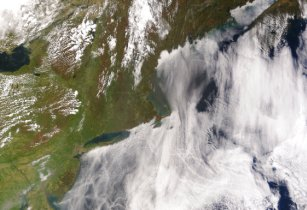ShipTracks MODIS 2005may11